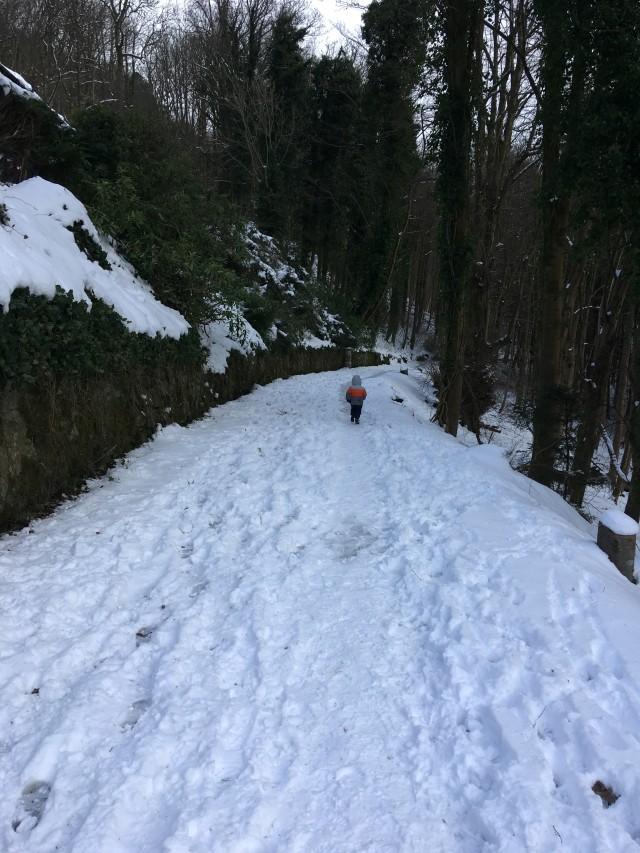 downhill snow